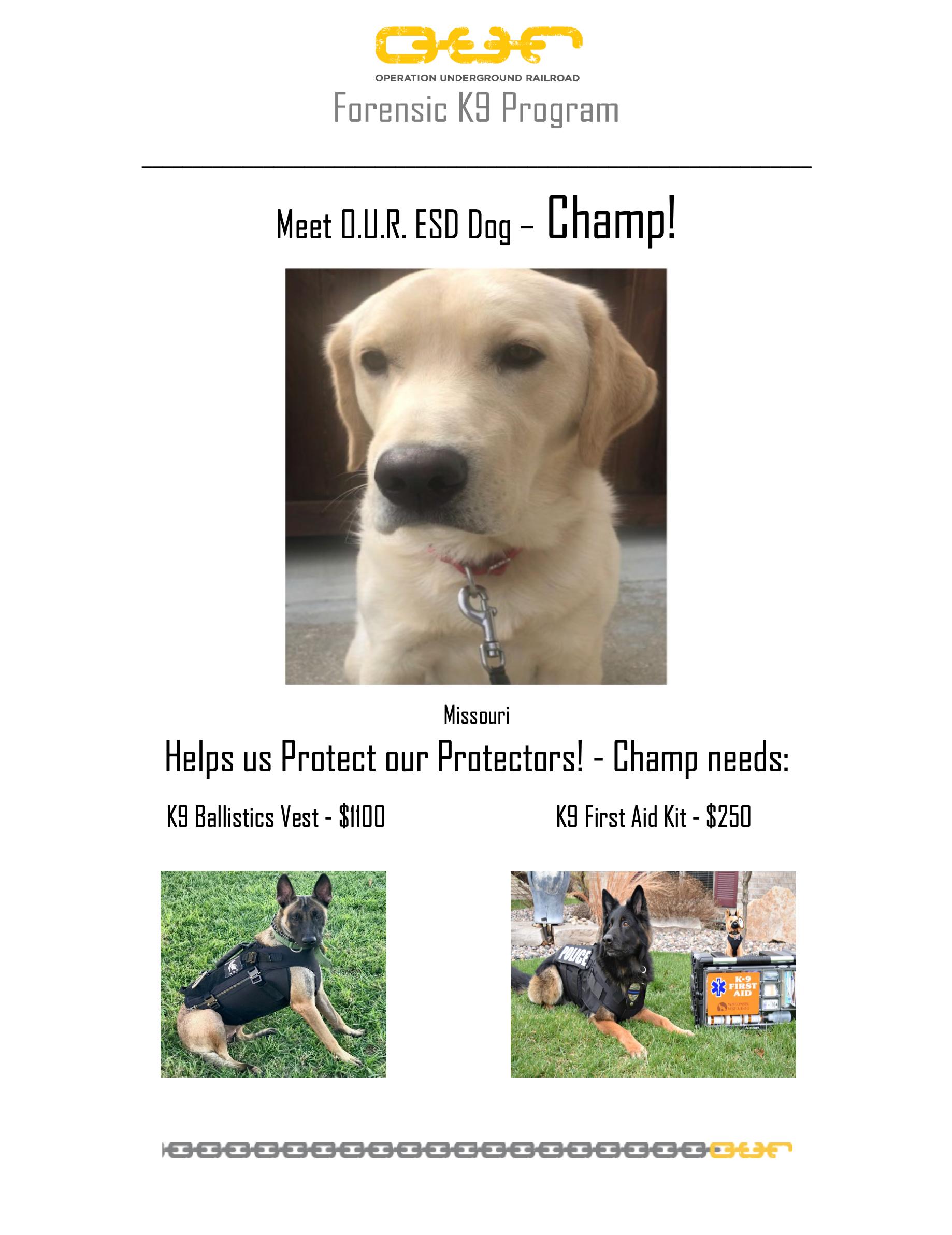 Protect Champ - Jefferson City, Missouri