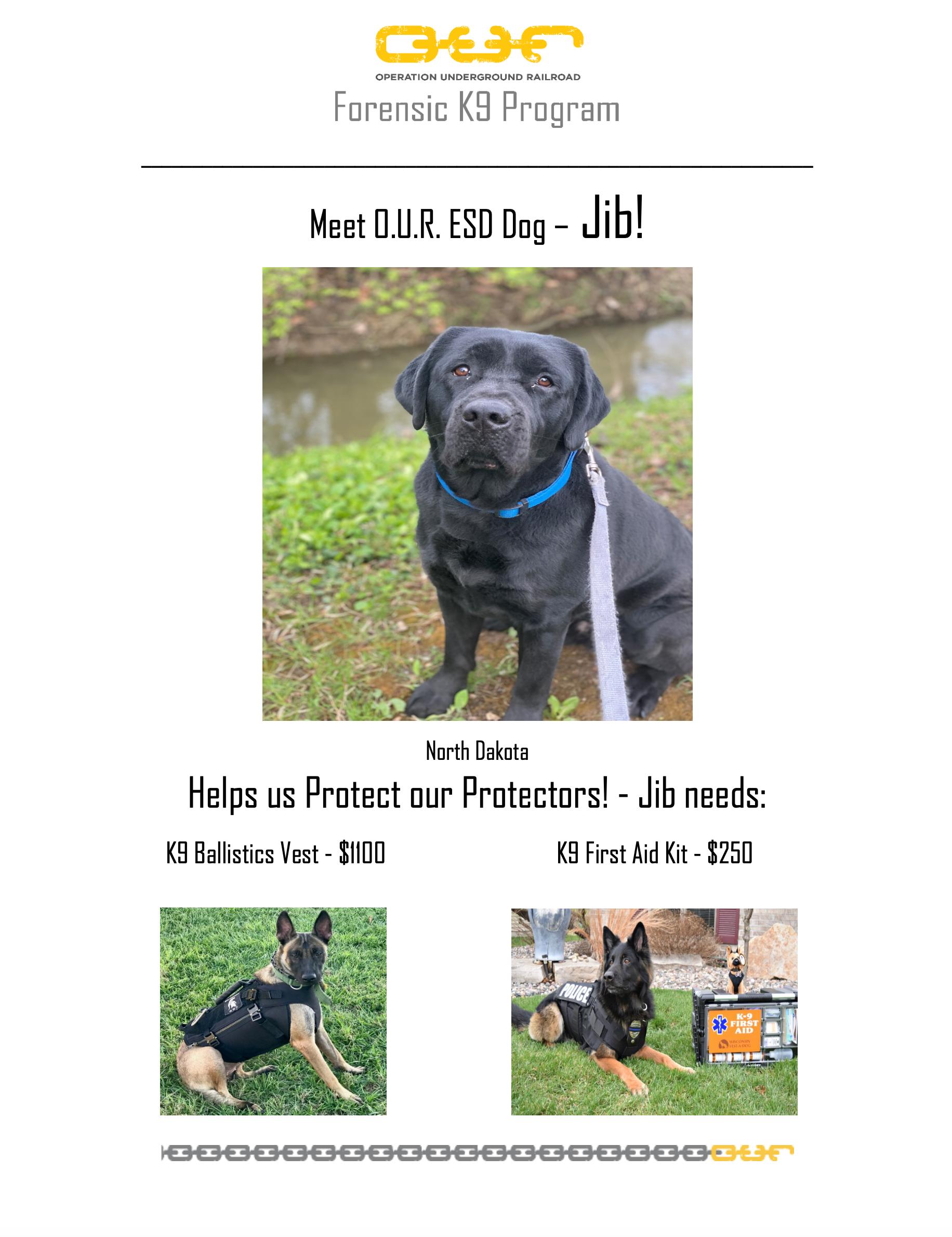 Protect Jib - Bismark, North Dakota