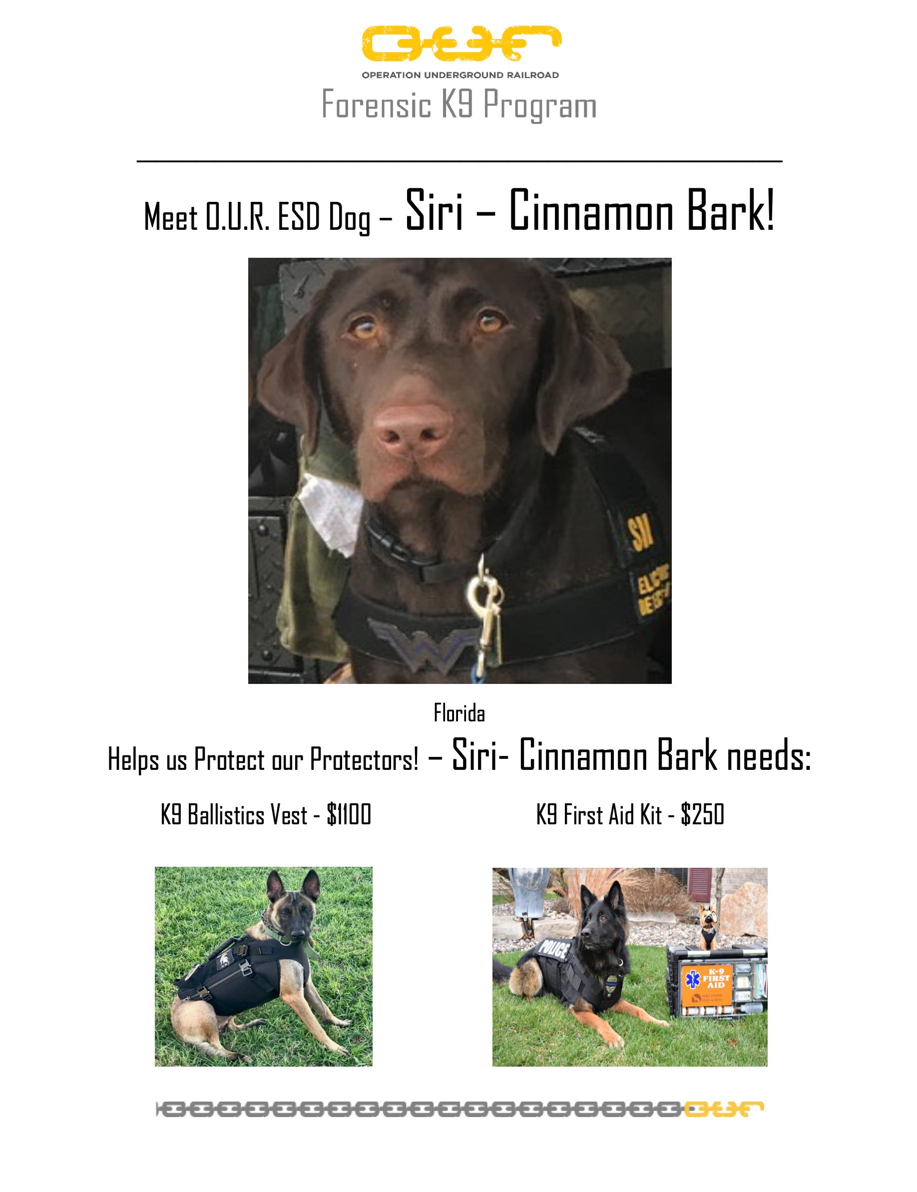 Protect Siri-Cinnamon Bark - Sanford, Florida