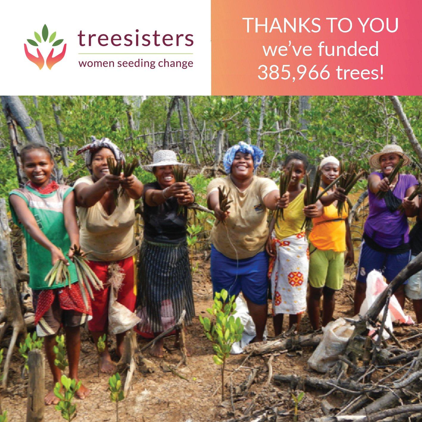 385000 trees