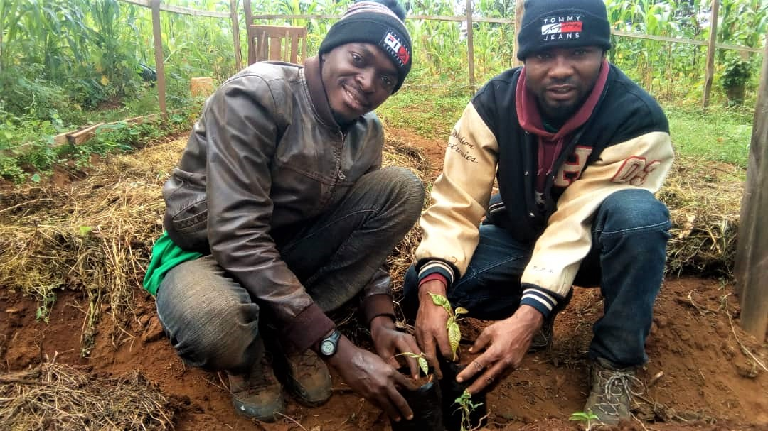 Cameroon AF officer and OGS Focal Person potting Cola seedling in Mmuockmbie
