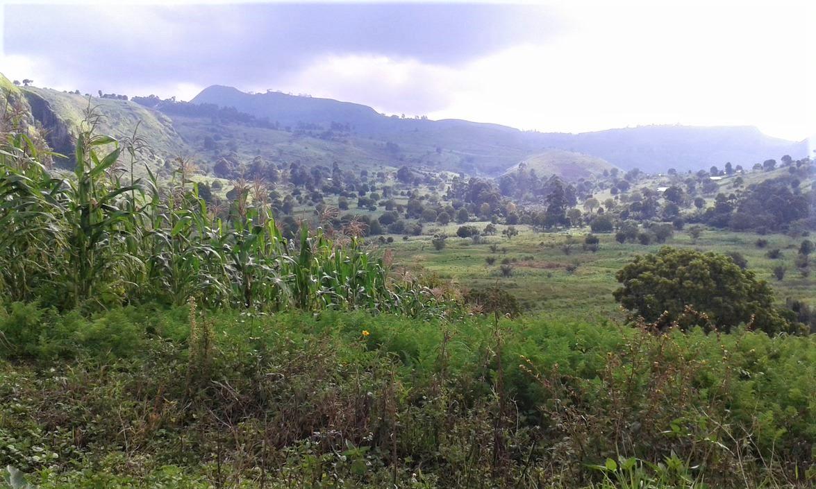 Cameroon Mt Bamboutos Caldera 2