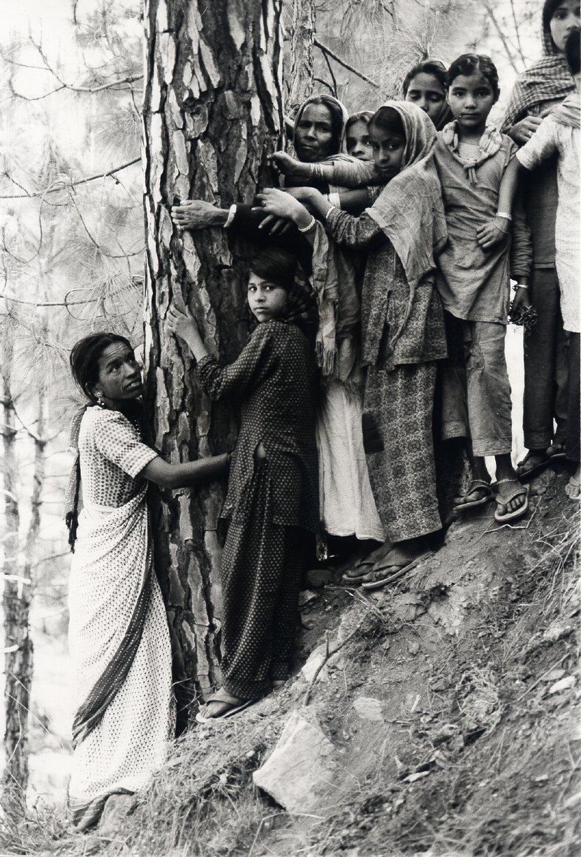 chipko-movement 1970