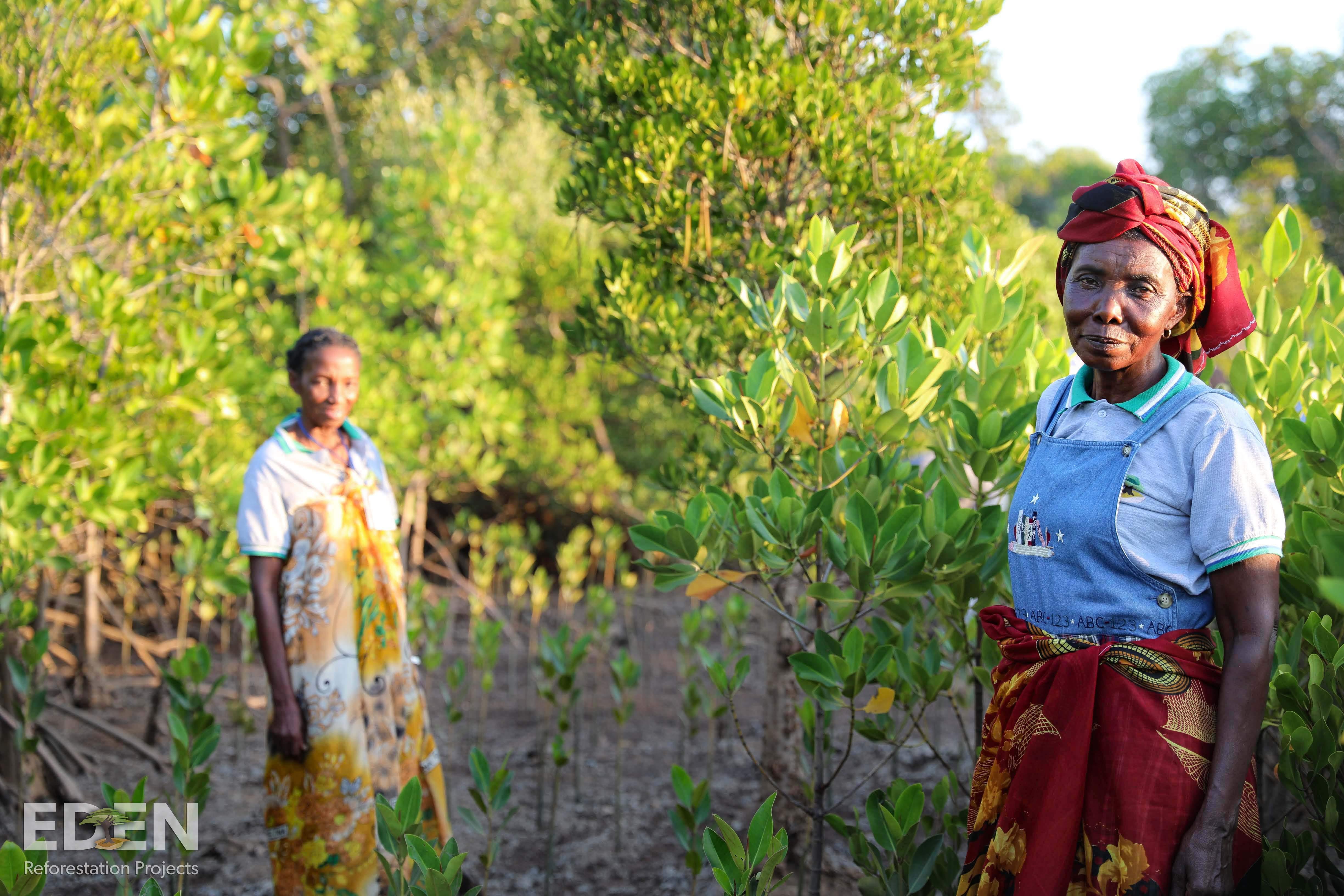 Eden in Madagascar