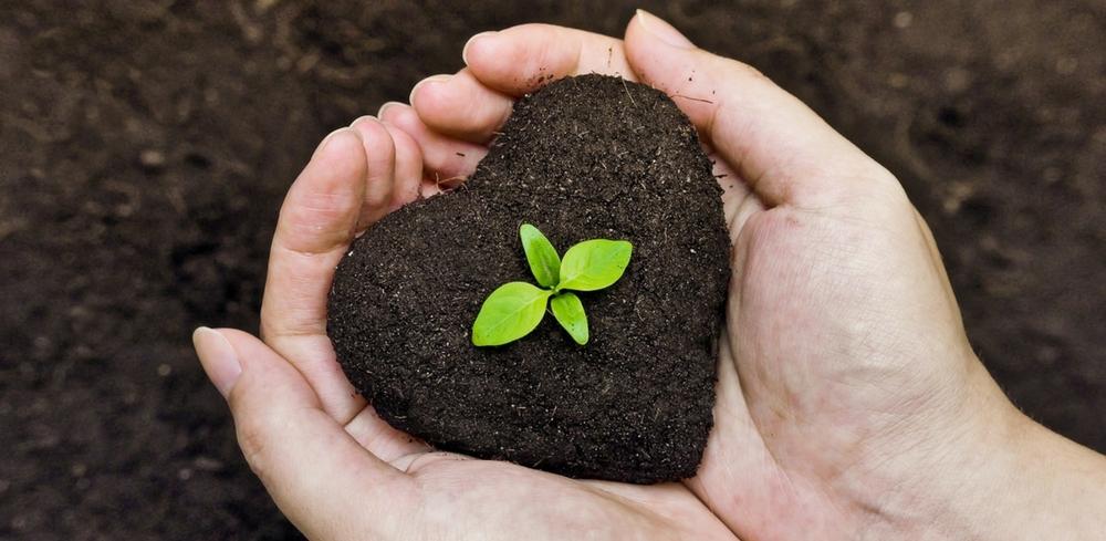 Heart soil 1000