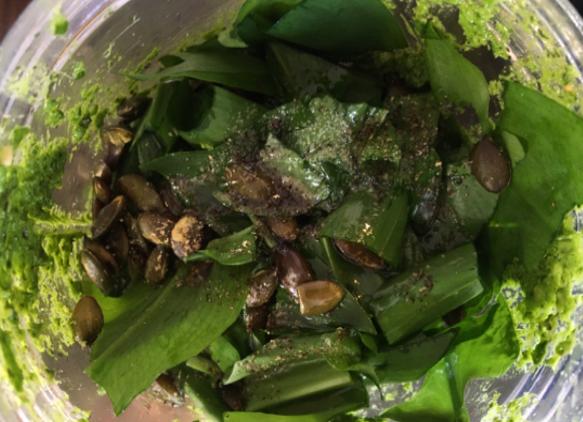 Foraged Wild Garlic Pesto