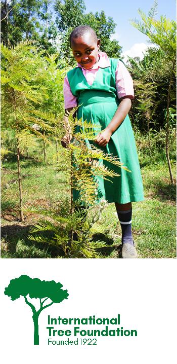 Girl-with-Tree-Kenya-new