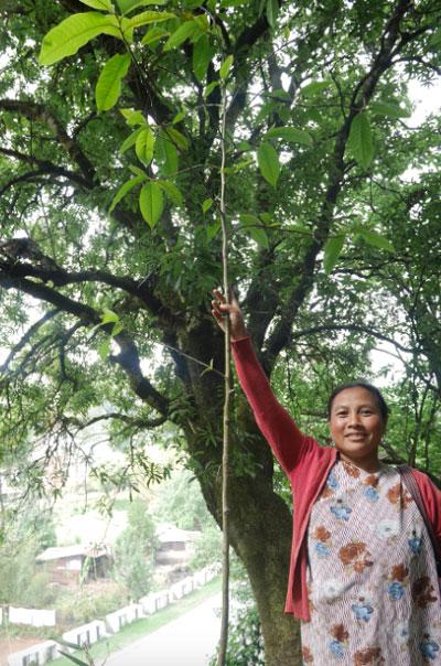 Khasi-Hills-Woman