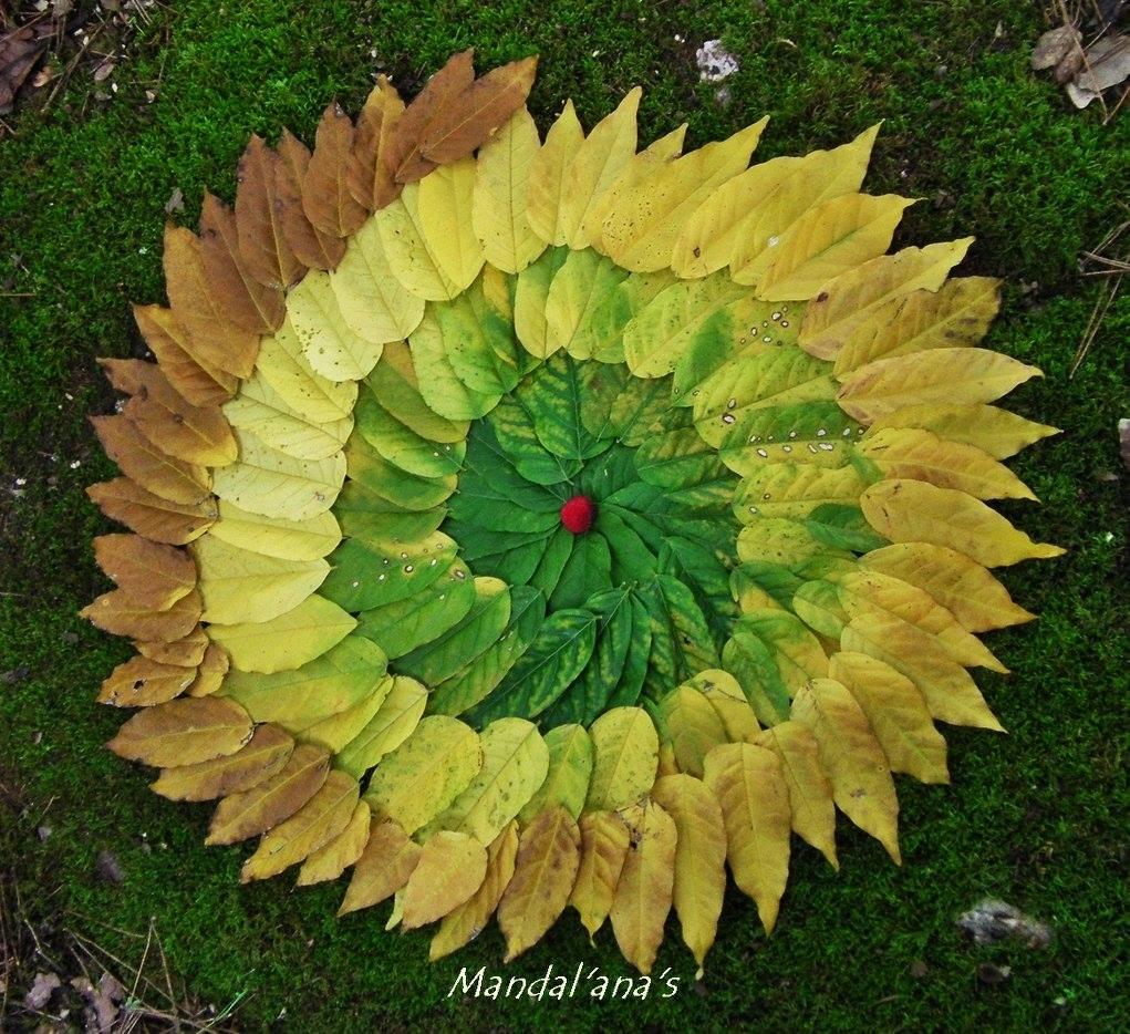 Mandala Image Credit to Ana Castilho