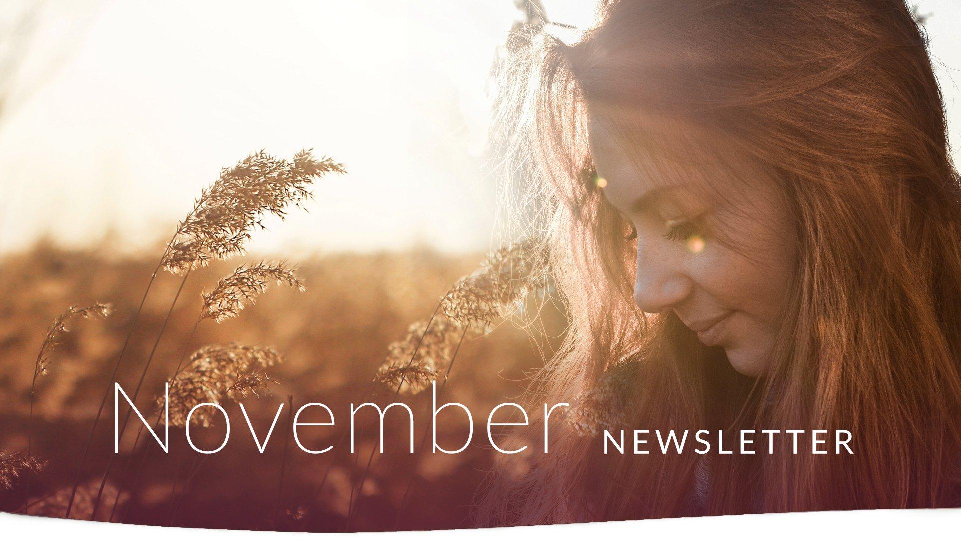 NovemberNewsletter 1