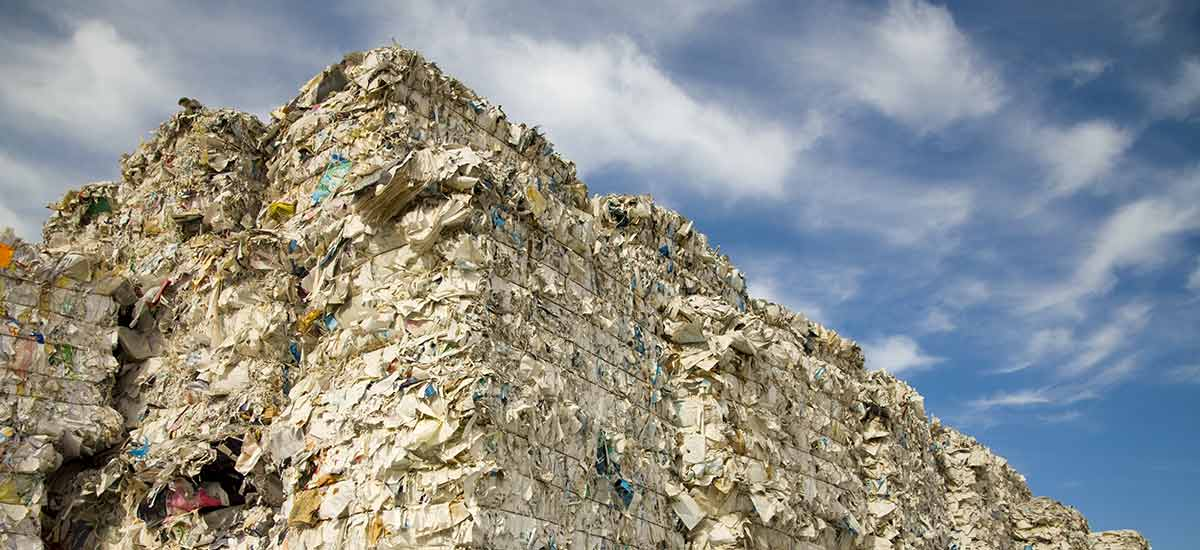 Paper Waste Mountain