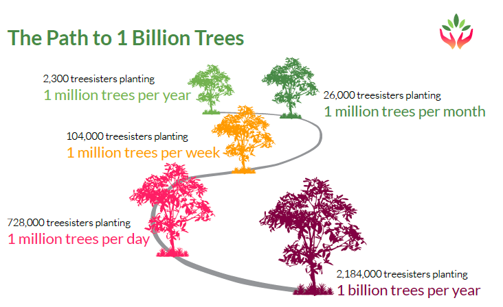 path to billion trees