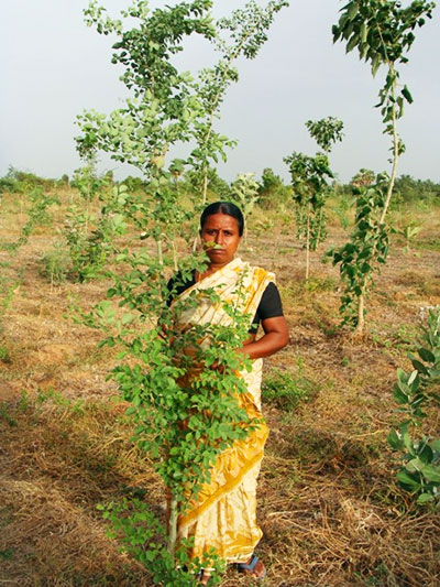 ProjectGreenHands-Woman-with-Tree