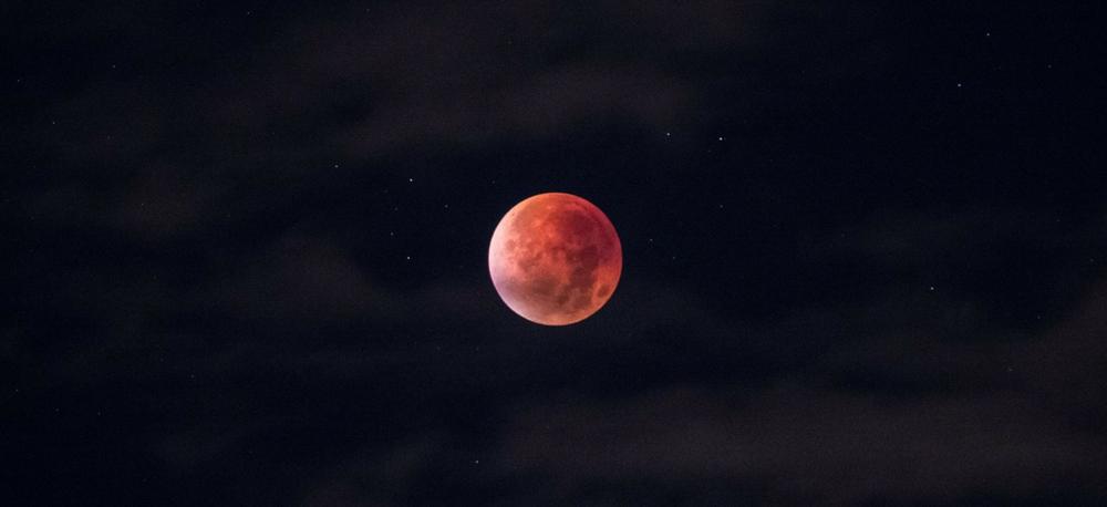 Red Moon Wild Power Blog 1000 sz