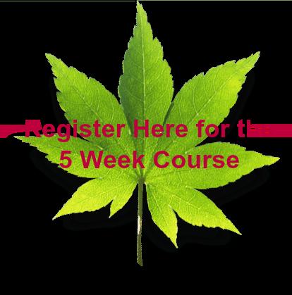 RegisterHere-Course