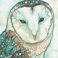 Tamara Phillips Barn Owl