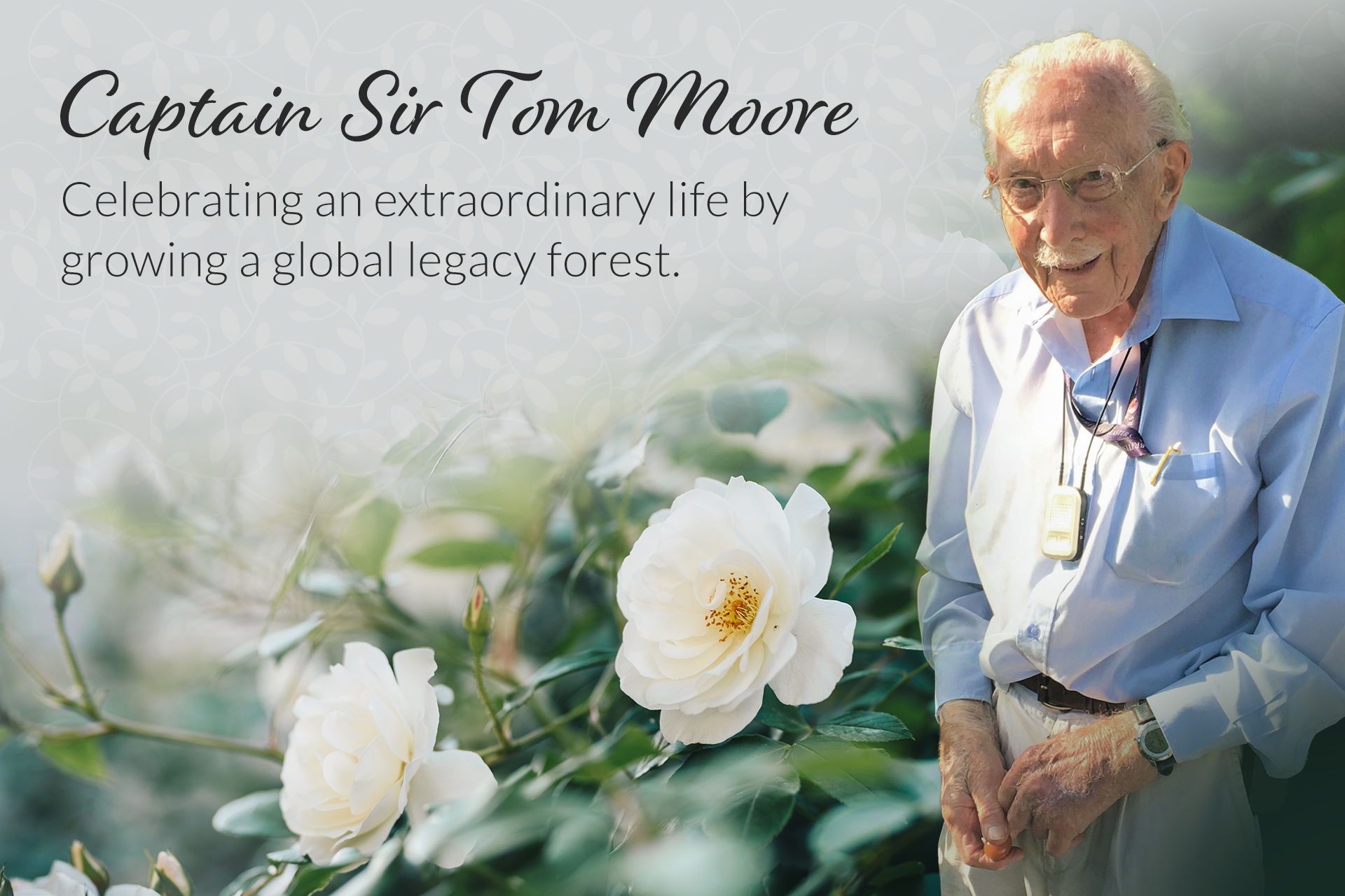 Sir Tom Legacy Forest