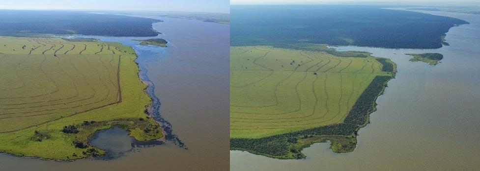 WEFOREST Before and After Coastline v2