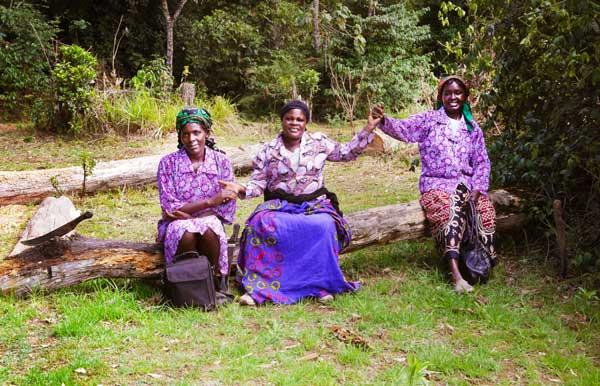 Women-sitting-on-a-log