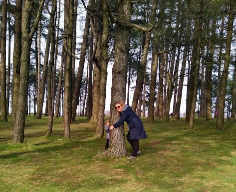 Moorey birthday trees 2021