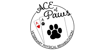 Ace of Paws Vendor Logo Doggie Dash & Dawdle 2020