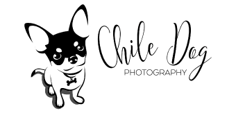 Chile Dog Photography Vendor Logo Doggie Dash & Dawdle 2020