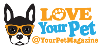 Your Pet Magazine Logo Doggie Dash & Dawdle 2020