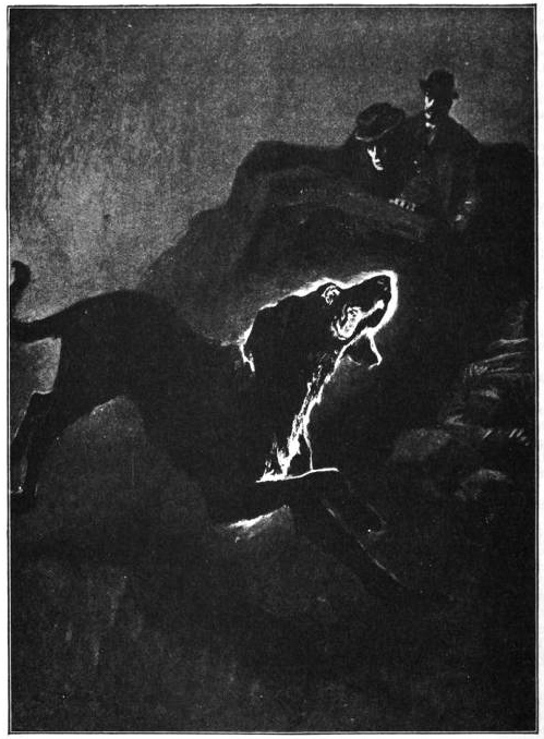 """The Hound of the Baskervilles Sidney Paget  1892  Photographic reproduction of ink or watercolor on paper  Illustration for Arthur Conan Doyle's """"The Hound of the Baskervilles,"""" p. 424 (full-page illustration) Formatting by George P. Landow,  Internet Archive, http://www.victorianweb.org/art/illustration/pagets/249.html"""
