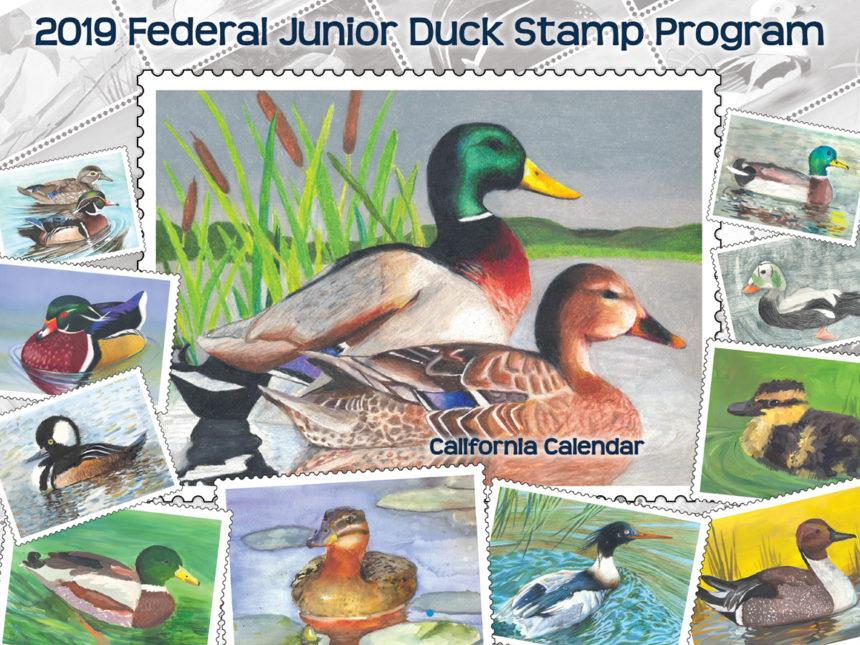 2019 Junior Duck Stamp Calendar