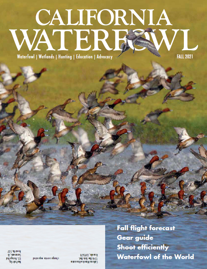Fall issue on its way to members