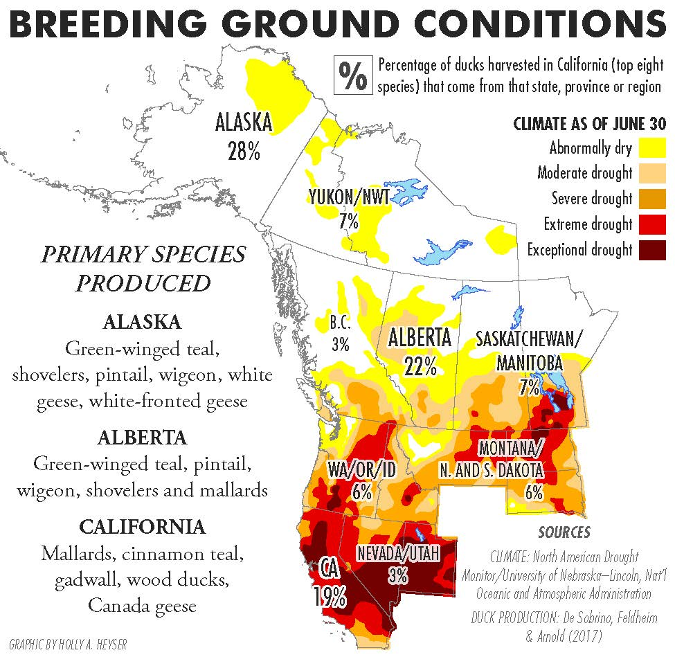Map of waterfowl breeding grounds critical to California