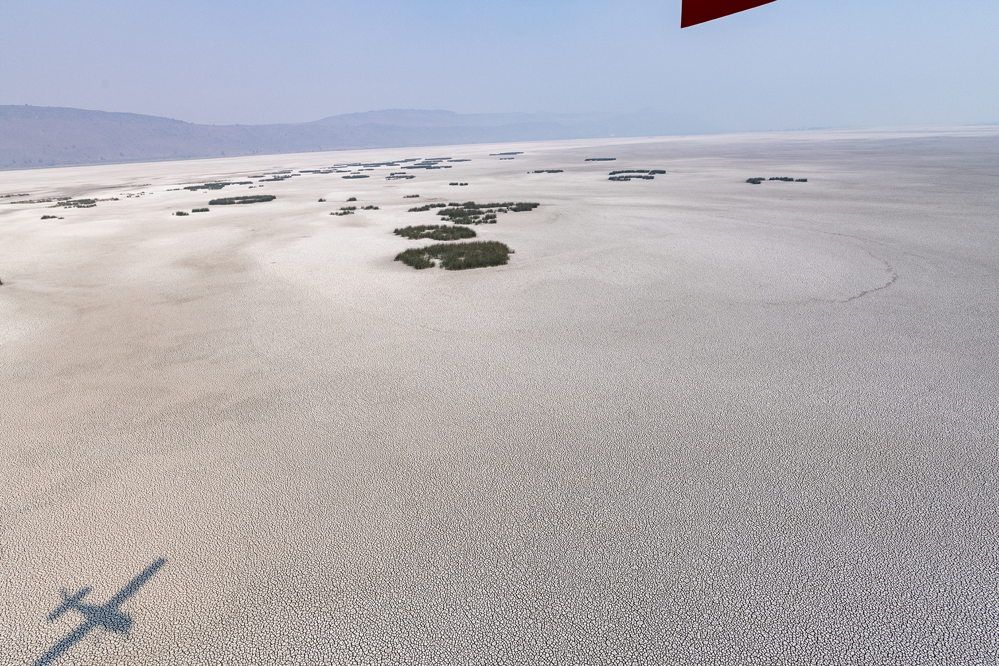 A thoroughly drained Sump 1A at the Tule Lake NWR