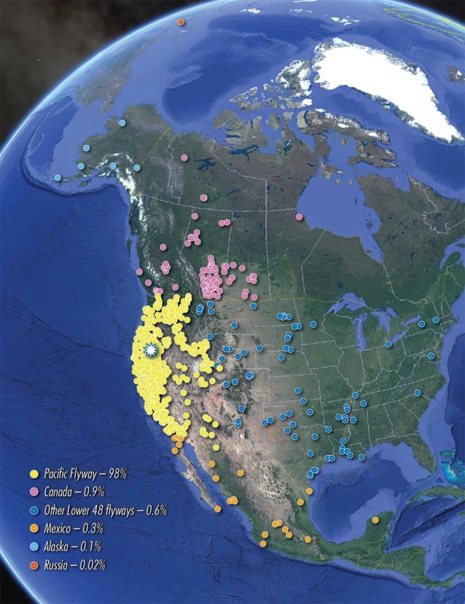 Map of locations where waterfowl banded at the Lower Klamath National Wildlife Refuge were recovered