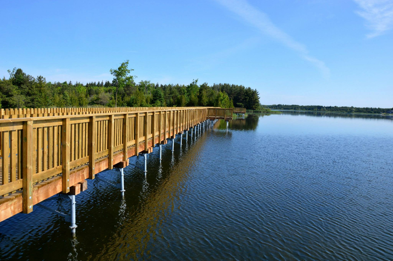 Enhancing Island Lake Conservation Area