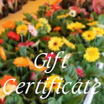 Spring Plant Sale Gift Certificate