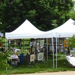 Stems Plein Air Art Fair Entry Fee 2019