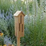 Make a Gourd Birdhouse Class  - 4.6.19