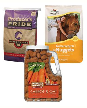 Assorted Horse Treats for the Elephants - Ongoing Need - $5.99 to $6.99 / Bag