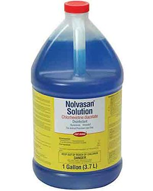 Nolvasan Solution, 1 Gallon Size - $69.65 Each - Ongoing Need
