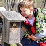 Acorn Academy Nature Preschool: 2018 Fall Session (Wednesday class)