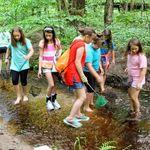 Creek Freaks Homeschool Series (ages 11+)