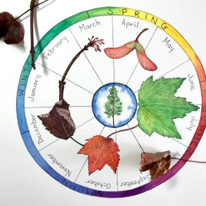 Botanical Art: Illustrated Phenology Wheel - May 15 & 22