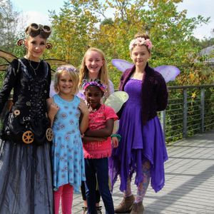 Fairyfest - October 10