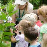 Donate to the Arboretum's Annual Fund