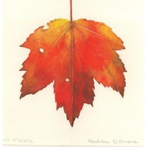 Watercolor: Fall Leaves - November 15