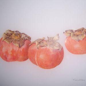 Open Botanical Art Studio with Lee D'Zmura - October 11