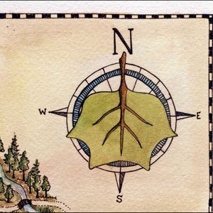 Compass Rose - March 31