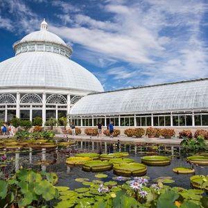New York Botanical Garden - September 18