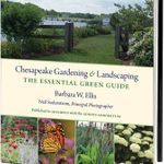 Chesapeake Gardening & Landscaping - Barbara W. Ellis