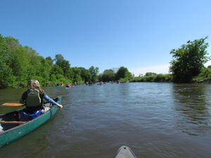 Guided Paddle:  Lower Missisquoi River, July 20, 2019